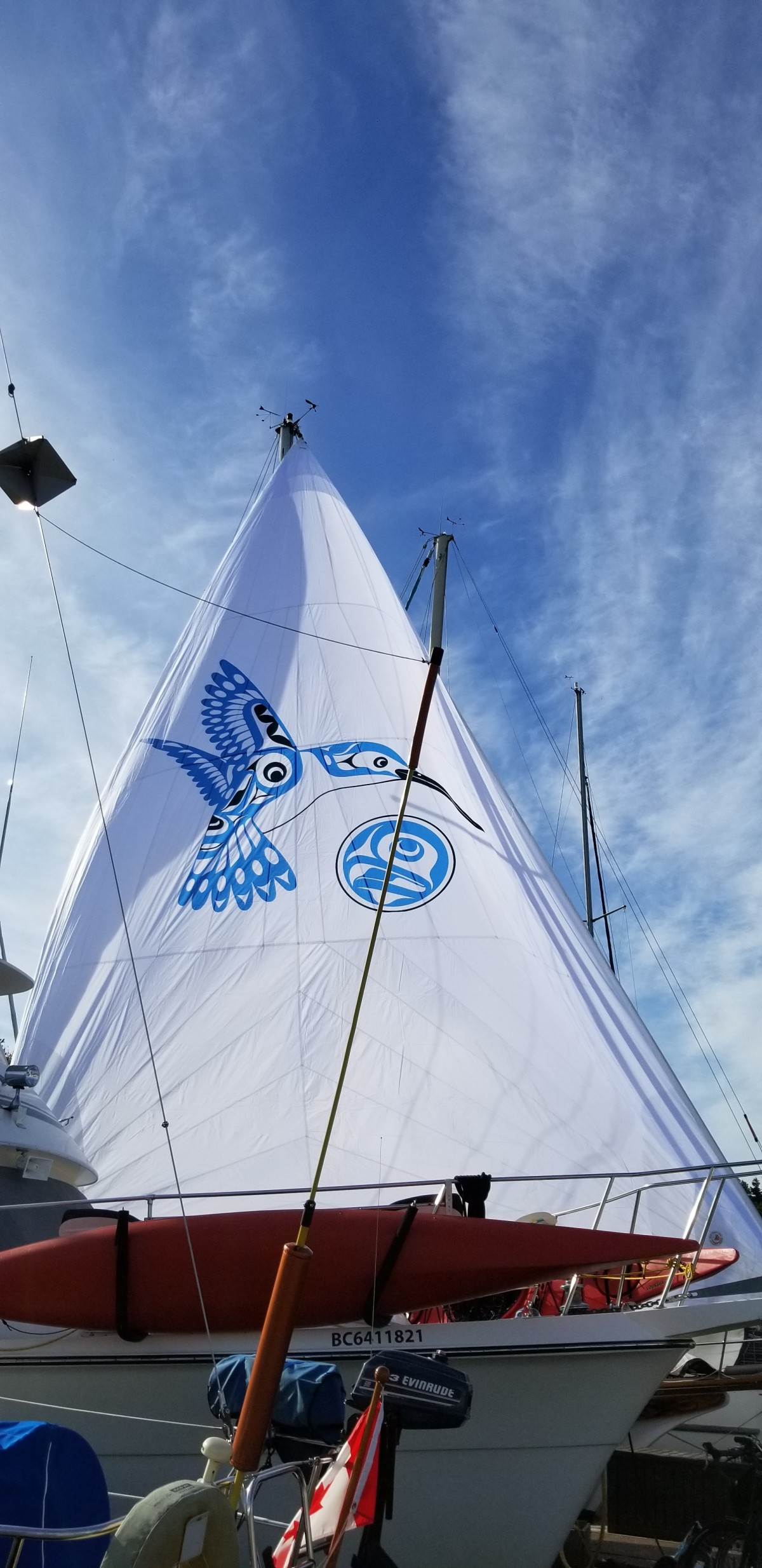 Our new sail and the story of our logo